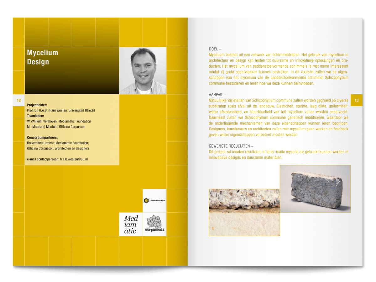 spread uit het binnenwerk van het boekje Creatieve Industrie van Clicknl NWO TNO
